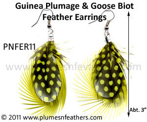 Feather Earrings PNFER11