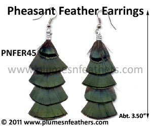 Feather Earrings PNFER45