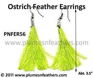 Feather Earrings PNFER56