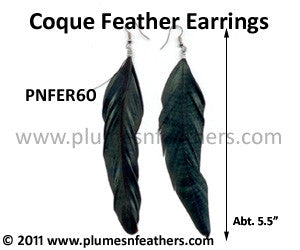 Feather Earrings PNFER60