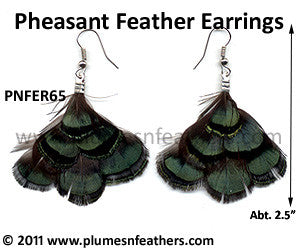 Feather Earrings PNFER65