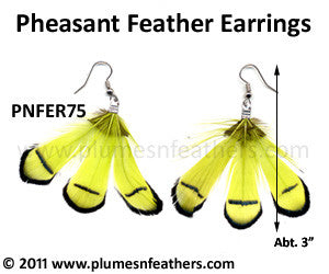 Feather Earrings PNFER75