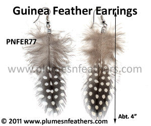 Feather Earrings PNFER77