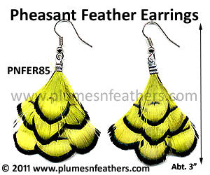 Feather Earrings PNFER85