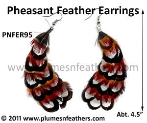 Feather Earrings PNFER95