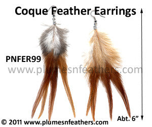 Feather Earrings PNFER99