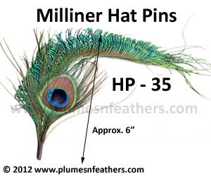 Hat Pin HP '35'