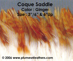 "Natural Strung Ginger Saddle Feathers +4"" ½ Oz."