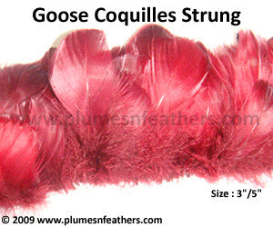 Goose Coquille Strung Dyed ½ Oz.