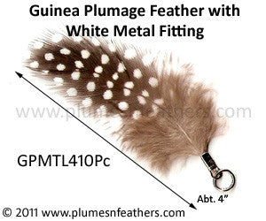 Guinea Plumage with Fitting 10Pc/Pack.