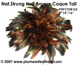 "Half Bronze Strung Coque Tails 14""/16"" ½ Oz. Pack"