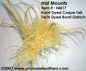 Hat Mount HM '17'