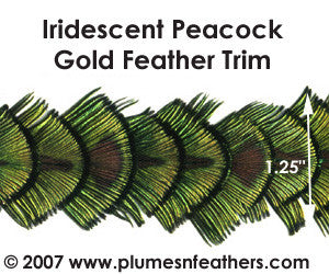 Peacock Gold Plumage Trim