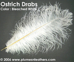 Ostrich Drabs Dyed and Bleached White