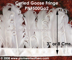 Curled Goose Feather Fringe