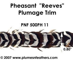 PH11 Pheasant Reeves Trim
