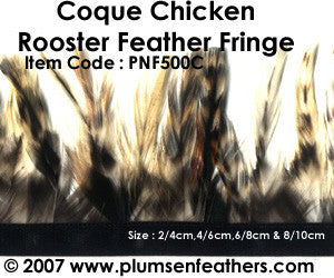Coque Grey Chinchilla Fringe 4/6cm