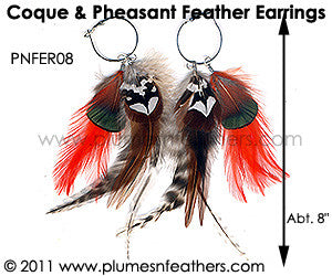 Feather Earrings PNFER08