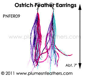 Feather Earrings PNFER09