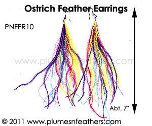 Feather Earrings PNFER10