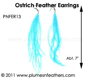 Feather Earrings PNFER13