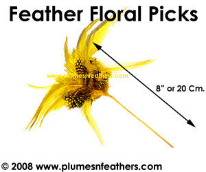 Feather Floral Pick PNFFP01