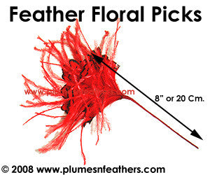 Ostrich & Pheasant Tippet Floral Pick