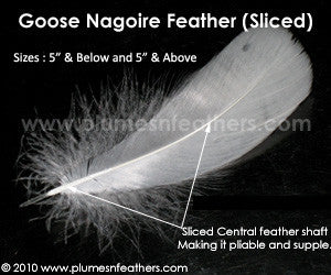 "Sliced Goose Nagoires Strung Dyed 5"" & Above ½ Oz."