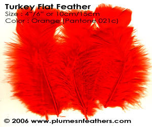 "Turkey Flats 5"" & Below Selected"