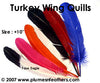"Turkey Quills 8""/10"" Dyed Selected"