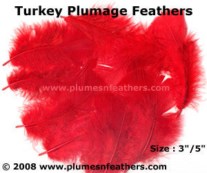 "Turkey Plumage 3""/5"" Dyed Selected"