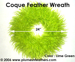 Feather Wreath Coque Saddle '10'