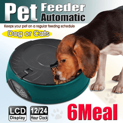 Popamazing 6 Days Cat + Dog + Rabbit Meal Automatic Pet Feeder Auto Dispenser (Yellow)