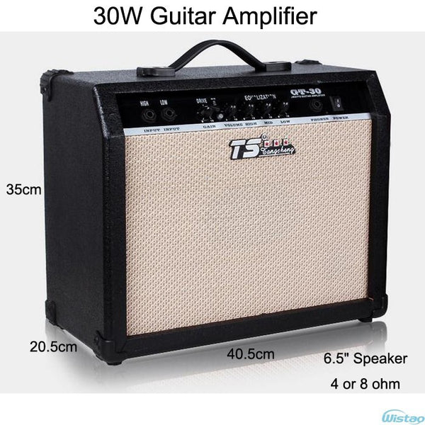 30W Digital Acoustic Guitar Amp Amplifier Speaker 6.5 inches with 3 Bands Effects & 2 Simulation Effect Earphone Input Black