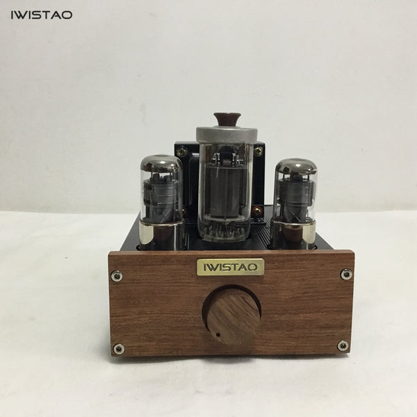 IWISTAO 1pc Mono Tube Amplifier FU50 Class A Singal-ended Small 300B 12W Preamplifier 2 x 6J4P