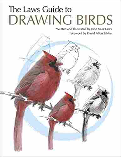 The Laws Guide to Drawing Birds Paperback