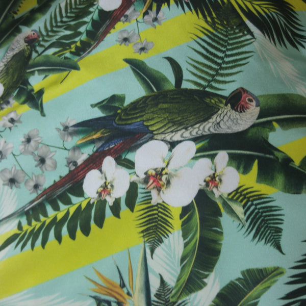 teal and green parrot fabric