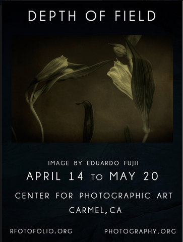 Depth of Field: Rfotofolio's Biennial Exhibition in Carmel, California