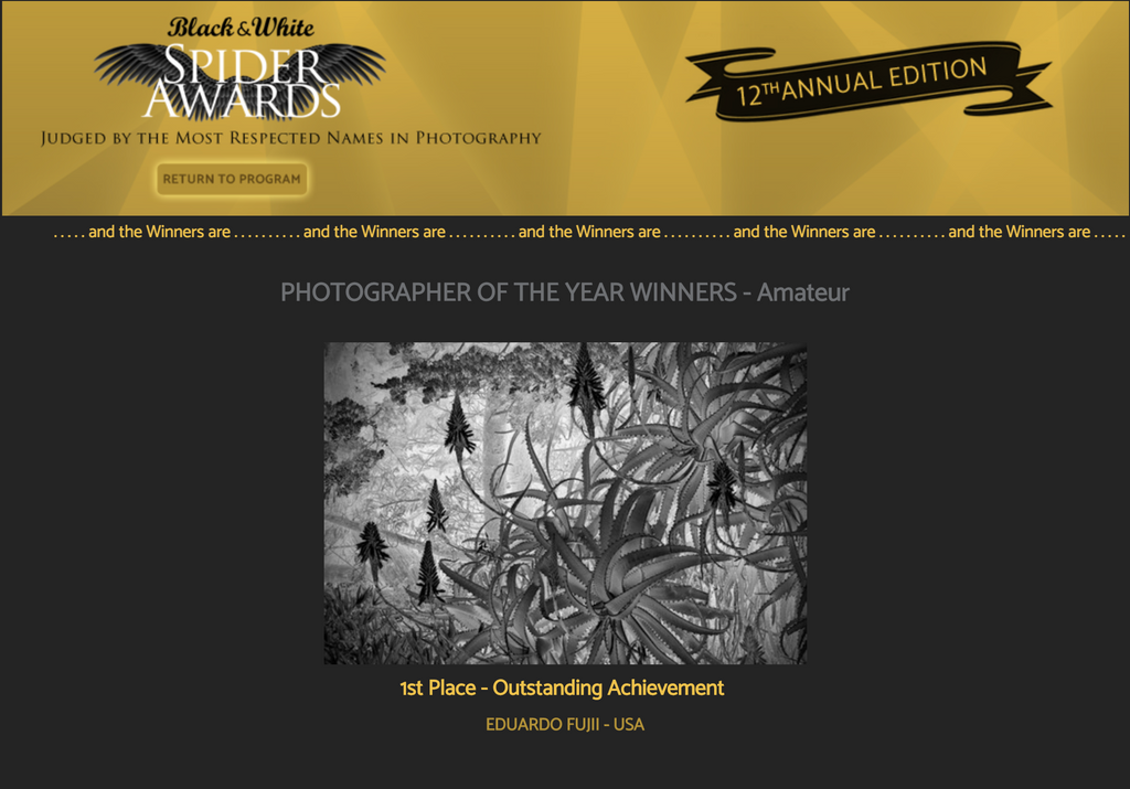 Eduardo Fujii Awarded Photographer of the Year at 12th Annual Black And White Spider Awards
