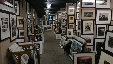 Willem Photographic Gallery