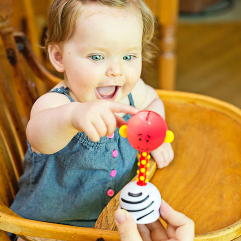 SmartNoggin NogginStik Development Light-up Rattle