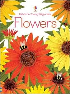 Usborne Young Beginners Flowers