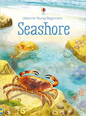 Usborne Young Beginners Seashore