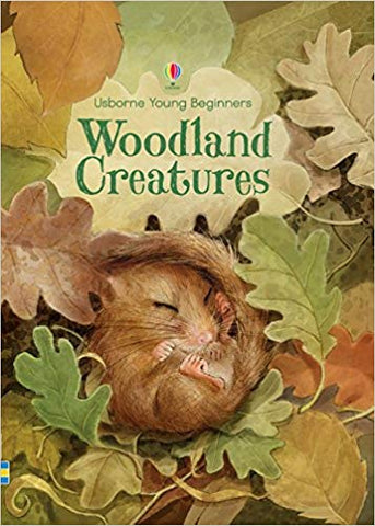 Usborne Young Beginners Woodland Creatures