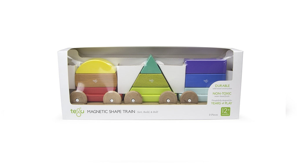 Tegu Shape Train - Rainbow