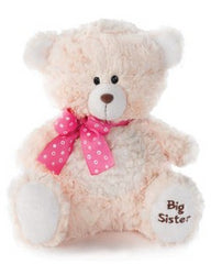 Nat & Jules Sibling Teddy Bear - Baby's First Gifts