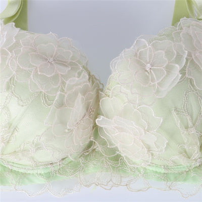 Tamarin Flora Embroidered Lace Underwire Gather Push-Up Bra And Panty Set - Belle Valoure - 6