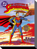 Canvas - DC Comics - Superman Premiere Issue - 30 x 40cm