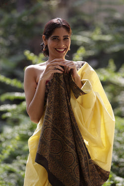 The Ketaki Saree 2 Yellow/ Brown