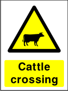 Cattle crossing sign.